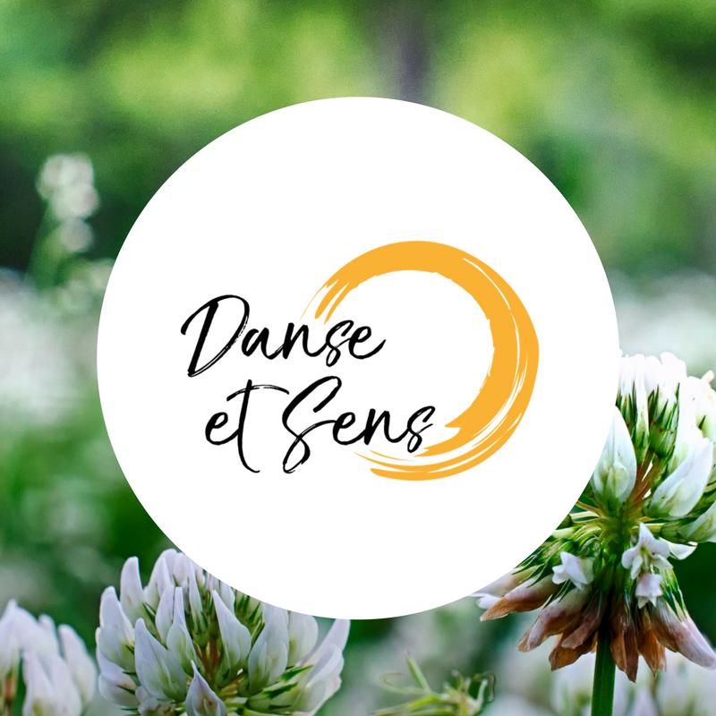logo-danseetsens-moulin-digital