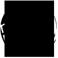 logo radio mega